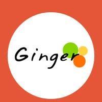 Ginger Webs - Testing company logo