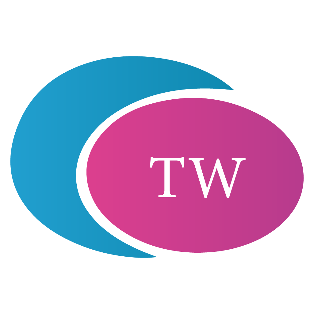 Tech Wizard IT Services Pvt Ltd - Data Analytics company logo