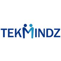 Samin TekMindz India Pvt. Ltd. - Technology Consulting company logo