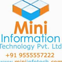 Mini Information Technology Pvt. Ltd. - Software Solutions company logo