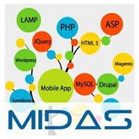 Midas IT Services India Pvt Ltd - Web Development company logo