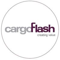 Cargo Flash Infotech Pvt Ltd- 142 - Consulting company logo