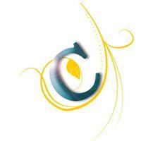 Credofy - Digital Marketing company logo