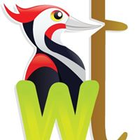 Woodpecker Technologies Private Limited - Web Development company logo