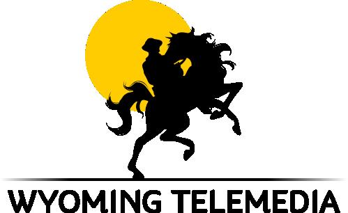 Wyoming Telemedia Services (P.) LTD. - Erp company logo