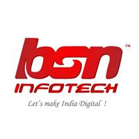 BSN Infotech Pvt. Ltd. - Data Management company logo