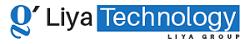 Liya Technology Private Limited - Web Development company logo