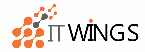 ITWings Infosystem Pvt Ltd - Data Analytics company logo