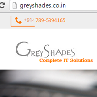 Grey Shades Software Solutions Pvt. Ltd. - Software Solutions company logo