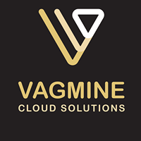 vagmine cloud solution private limited - Consulting company logo