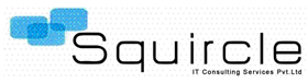 Squircle IT Consulting Services Pvt Ltd - Business Intelligence company logo