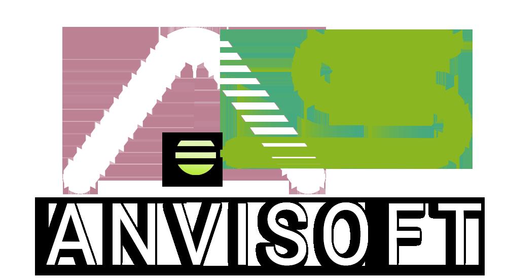 ANVI SOFT - Content Marketing company logo