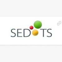 SEDOTS Info Technologies (P) Ltd. - Consulting company logo