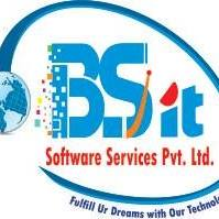 BSIT Software Services Pvt. Ltd. - Web Development company logo