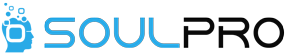 SOULPRO INFOLOGIX - Consulting company logo