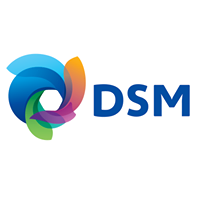 DSM SHARED SERVICES - Testing company logo