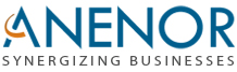 Anenor Information Systems Pvt. Ltd. - Business Intelligence company logo