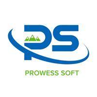 Prowess Software Services Private Limited - Big Data company logo