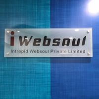 Intrepid Websoul Pvt Ltd - Human Resource company logo