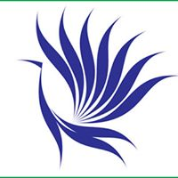 India Domain Web Service Pvt Ltd - Web Development company logo