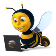 Techbee Web Solutions Pvt Ltd - Digital Marketing company logo