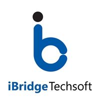 iBridge Techsoft Pvt Ltd - Digital Marketing company logo