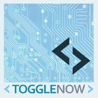 ToggleNow Software Solutions Pvt Ltd.- - Sap company logo
