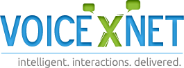 Voicexnet Technologies Pvt Ltd. - Consulting company logo