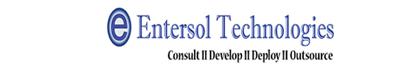 Entersol Technologies Pvt Ltd - Web Development company logo
