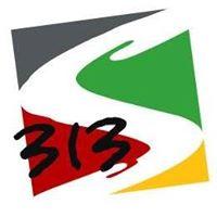Three 13 Solutions Pvt. Ltd. - Search Engine Marketing company logo