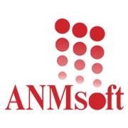 ANMsoft Technologies - Analytics company logo