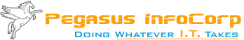 Pegasus InfoCorp - Consulting company logo