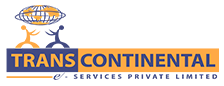 TRANS CONTINENTAL e SERVICES PRIVATE LIMITED - Consulting company logo