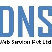 DNS Web Services - Digital Marketing company logo