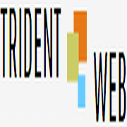 Trident Web Infoservices Pvt. Ltd. - Email Marketing company logo