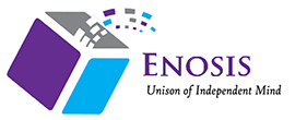 Enosis Solutions - Consulting company logo