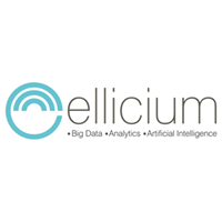 Ellicium Solutions Private Limited - Big Data company logo