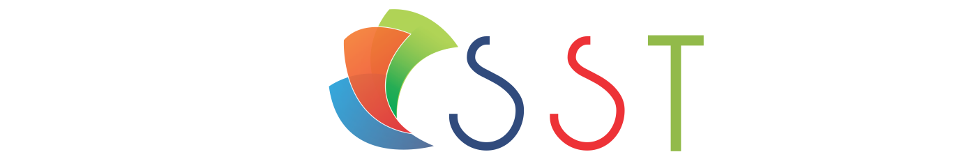 Stelsel Software Technologies Pvt Ltd - Logo Design company logo