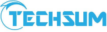 Techsum Technology Pvt Ltd - Search Engine Marketing company logo