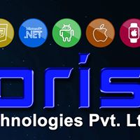 Noorisys Technologies Pvt Ltd - Web Development company logo