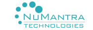 Numantra Technologies - Outsourcing company logo