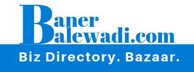 IPSense Consultancy Pvt Ltd. (Digital Social Media Marketing Agency Pune- Mumbai) - Email Marketing company logo