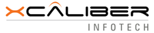 Xcaliber Infotech Pvt. Ltd. - Big Data company logo