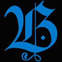 Bizz.Website Pvt Ltd (OPC) - Web Development company logo