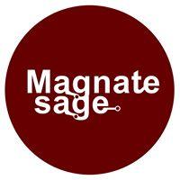 Magnatesage Technologies Pvt Ltd. - Virtual Reality company logo