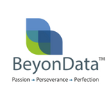 BeyonData Solutions Private Limited - Data Management company logo