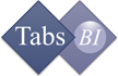 Tabs BI India Software Pvt. Ltd. - Web Development company logo