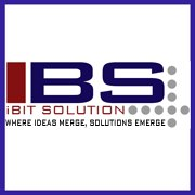 iBit Solution Private Limited - Testing company logo