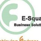ASK E-Square Business Solutions Pvt. Ltd. - Big Data company logo