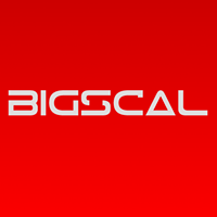 Bigscal Technologies Pvt Ltd. - Web Development company logo
